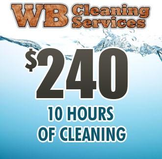 Sneak Peak Cleaning - 10 Hours