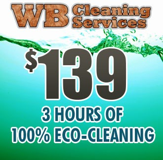 Eco-Friendly Cleaning - 3 Hours
