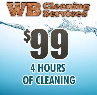 Sneak Peak Cleaning - 4 Hours