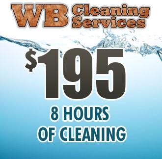 Sneak Peak Cleaning - 8 Hours